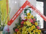 Bản tin số 3 : Phật Đản tại Khánh Hoà, Nhatrang — Huý nhật Huynh trưởng Gia Đình Phật tử Lê Thị Tuyết Mai vị quốc, vị pháp thiêu thân, tại Chùa Từ Hiếu, Saigon
