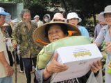 Báo trình của Tổng vụ Từ thiện Xã hội Viện Hoá Đạo GHPGVNTN về việc cứu trợ tại các tỉnh Ninh Thuận, Khánh Hòa, Phú Yên và Tây Ninh — Cáo phó Huynh trưởng Nguyên Diệu Nguyễn Thúc Đệ